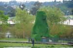 urso parque verde