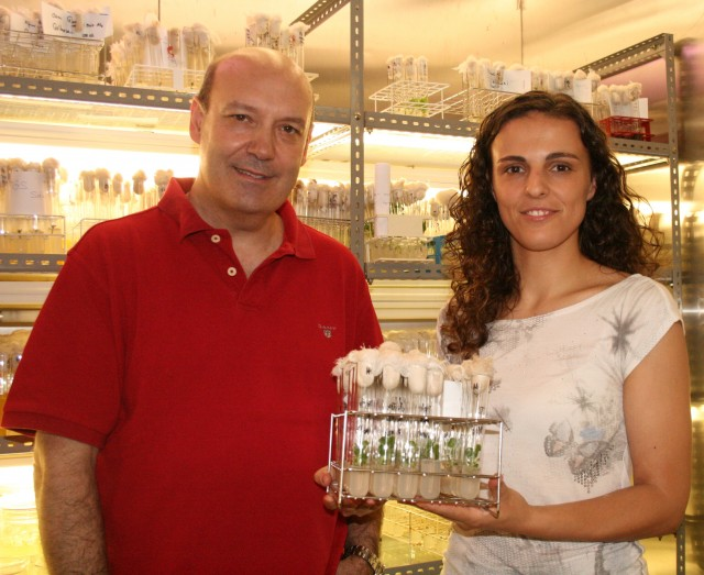 Jorge Canhoto e Sandra Correia