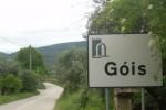 gois_1