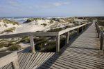 Pombal,  dunas no trilho da Baleia Verde na  Praia de Osso de Baleia. Paulo Cunha