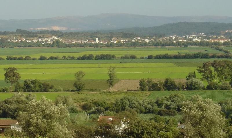 campos-do-mondego