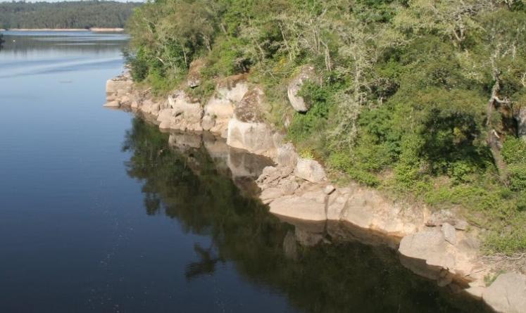 rio-mondego