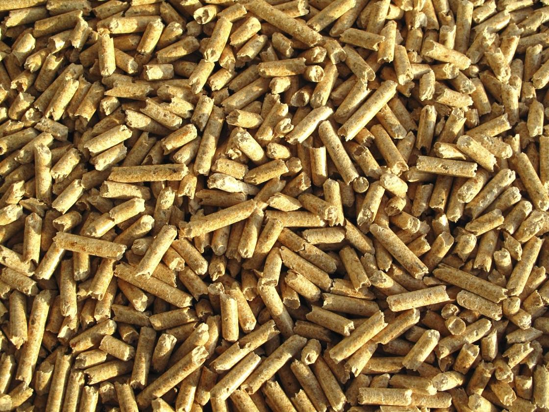 Biomassa (1)