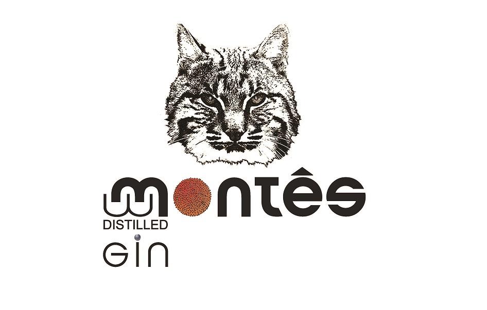 logo_gin montês
