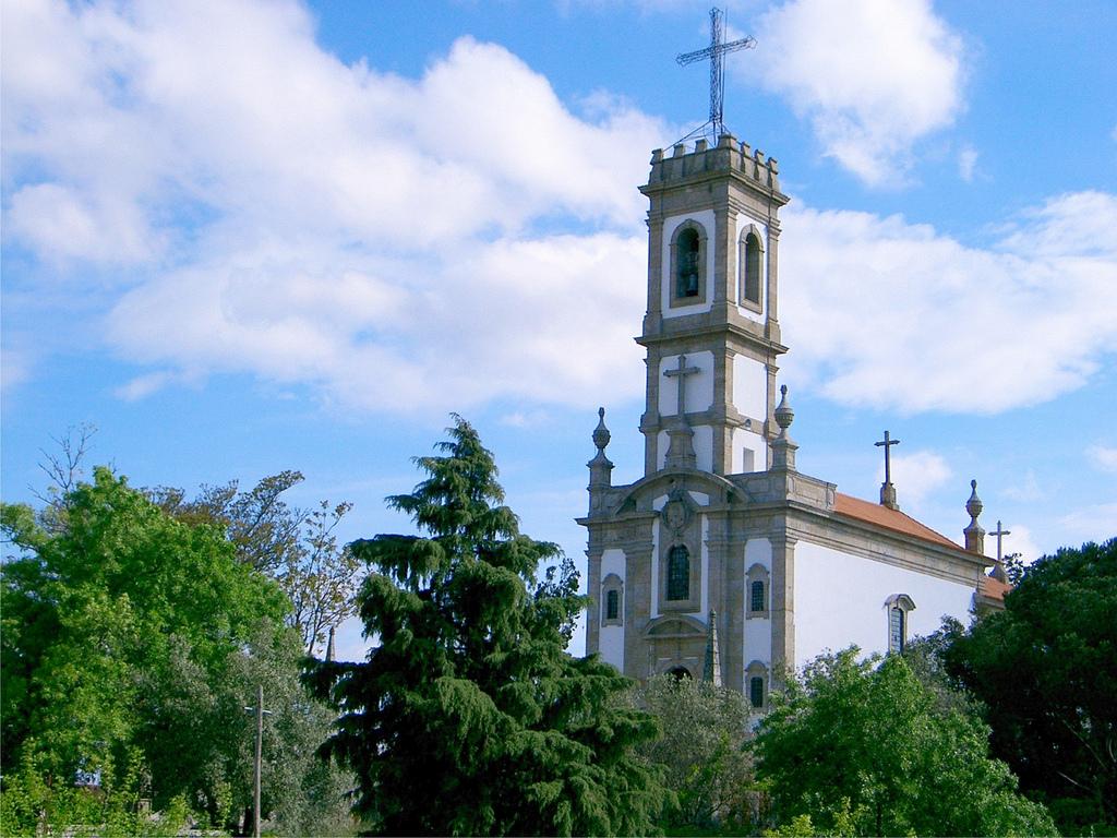 Judiciária de Coimbra caça mais um incendiário