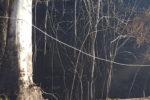 Estão assim as linhas na EN 230 nos concelhos de Seia e Oliveira do Hospital