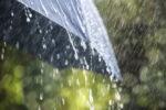 chuva-guarda
