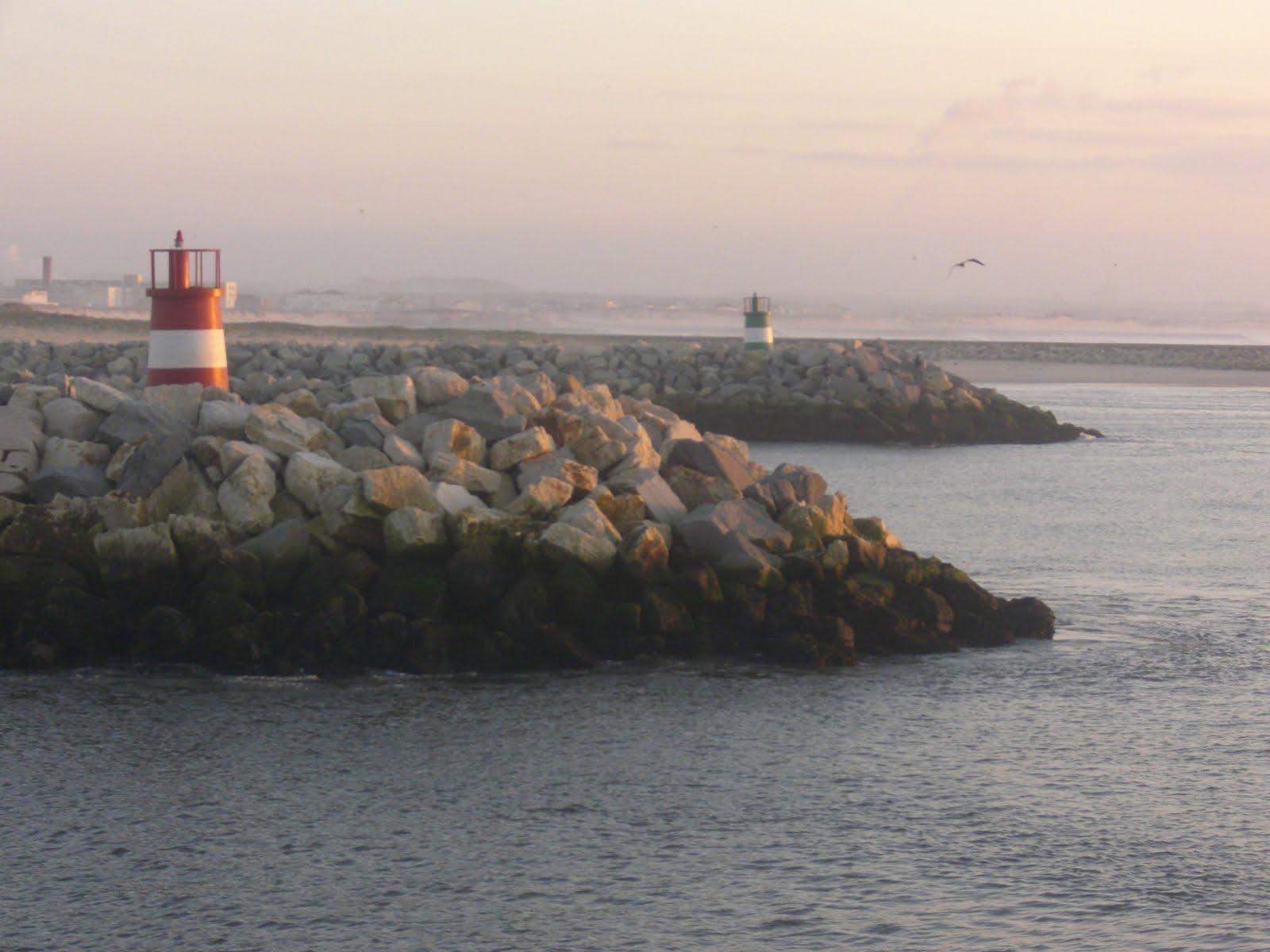 figueira da foz pesca e mar
